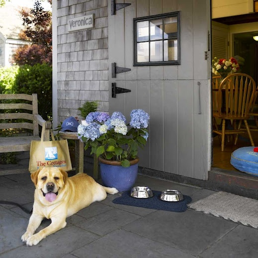 The Cottages Boat Basin Pet Friendly Accommodation 2017 Season April 5 October 28 Condé