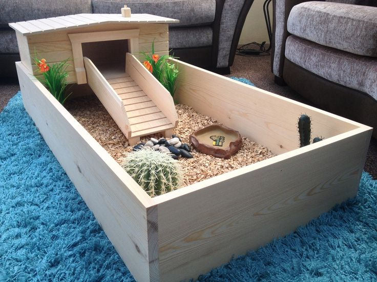 indoor tortoise habitat