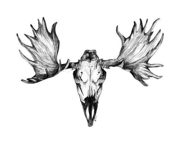 moose skull drawing www pixshark com images galleries Deer Head Logo free deer skull logos
