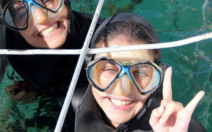 Shark-cage-diving with Marine Dynamics -04