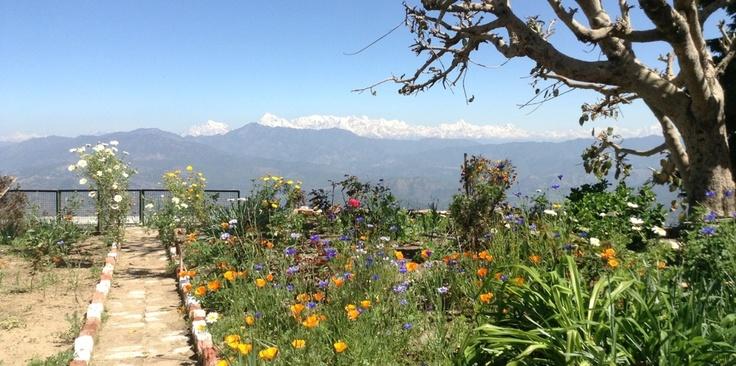 Himalaya Noord India, mooie reis, wanneer ga ik dit doen? Heel snel hoop ik!