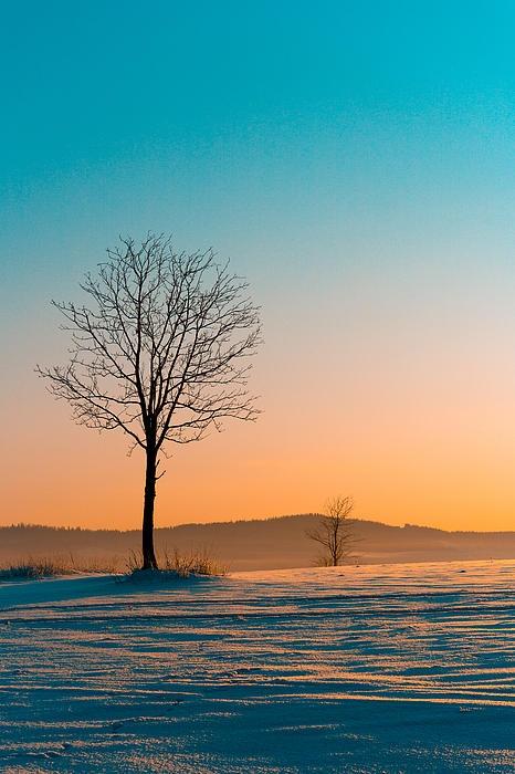 Winter Morning - Windsor, Ontario, Canada