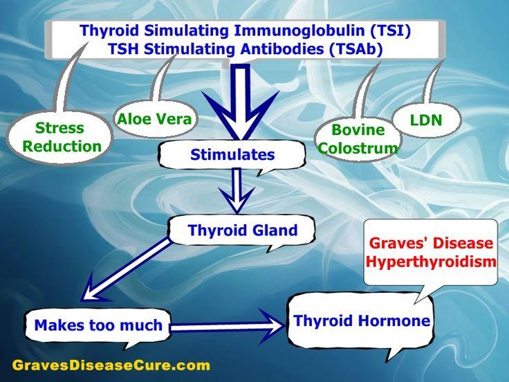 Adrenal Gland Disorders Natural Treatments