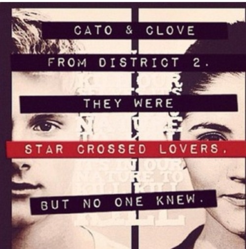 Cato And Clove Fanfiction