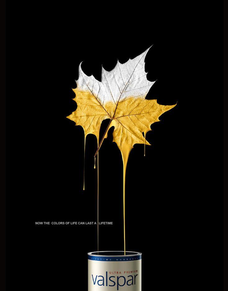 Valspar Paints: Leaf.