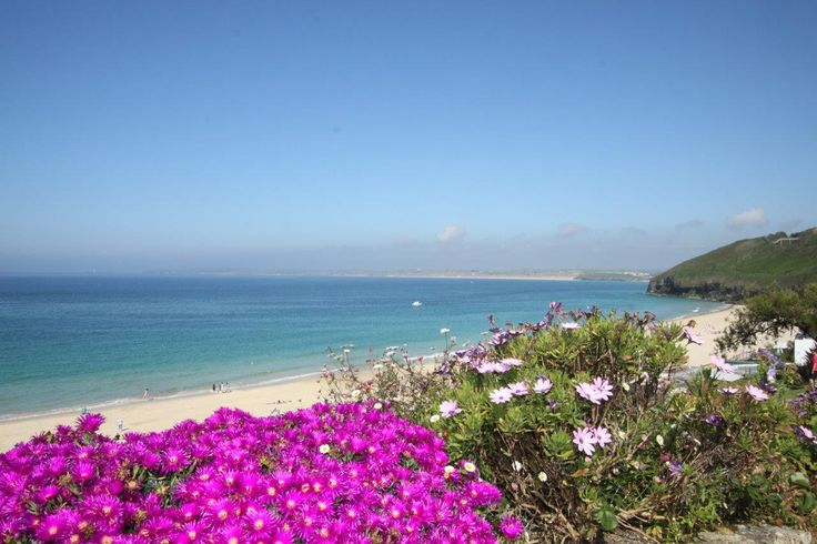 Carbis Bay, Cornwall in Summer.  The Sea Thrift in full bloom. #beach