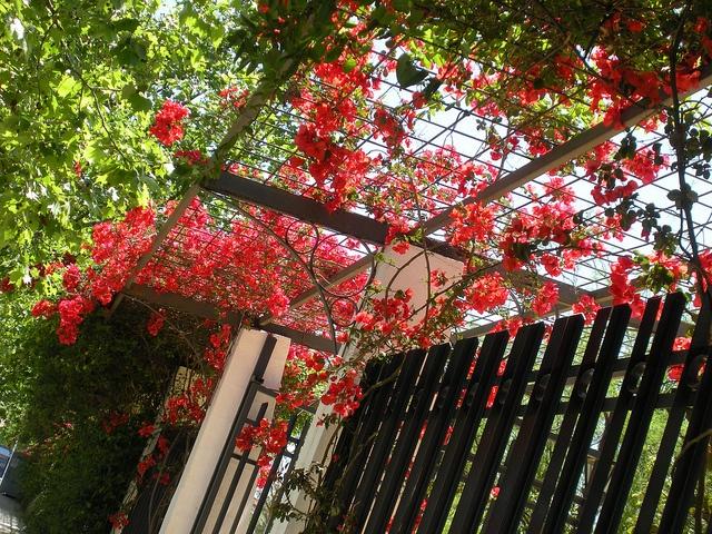 Springtime in Spain