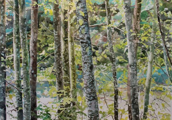 watercolor painting instructions for painting the dappled light by Sandrine Pelissier, includes video at the link