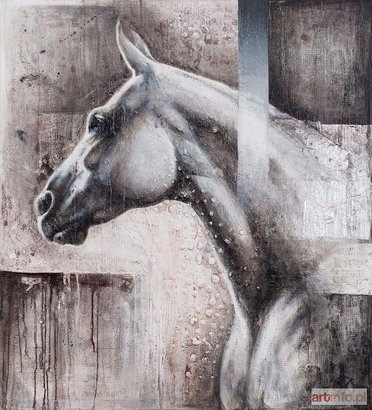 Kamila KARST ● Siwy I, 2015 ●