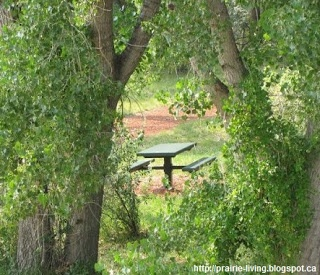 Prairie Living: Camping Eats