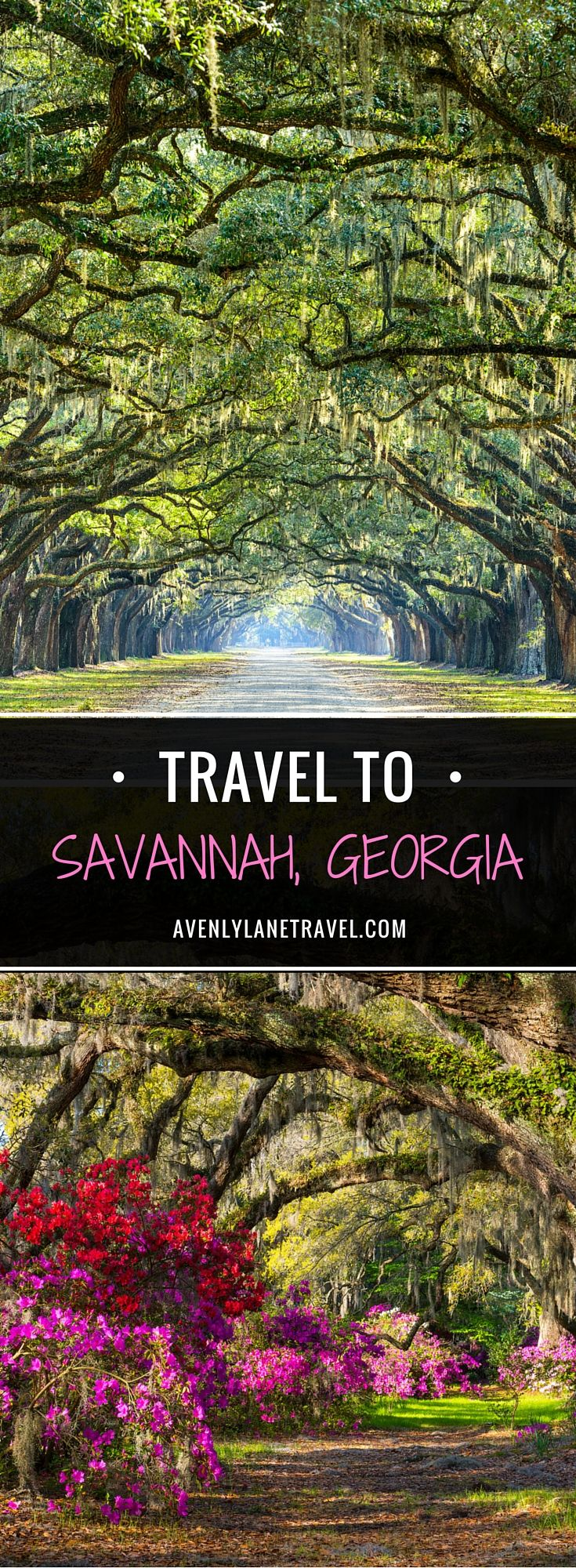 Even though Savannah is a Southern tourist hot spot, it unfortunately doesn't seem to get as much attention as New Orleans. When you picture the antebellum South, Savannah is exactly what should pop into your head. Click through to read the full post!