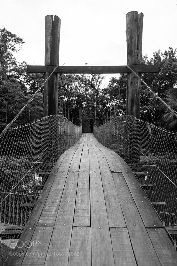 http://500px.com/photo/188771043 Ponte by fvallej -Sobre a ponte pensil!. Tags: citybeautyarchitecturecityscapebridgebeautifulblack and whitewhitephotoart500pxwoodblackphotographyarchitecturalimagebrazilbrasilsanta catarinabrusquecity\ and\architecture