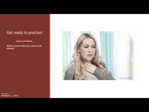 My own video explaining -ed pronunciation