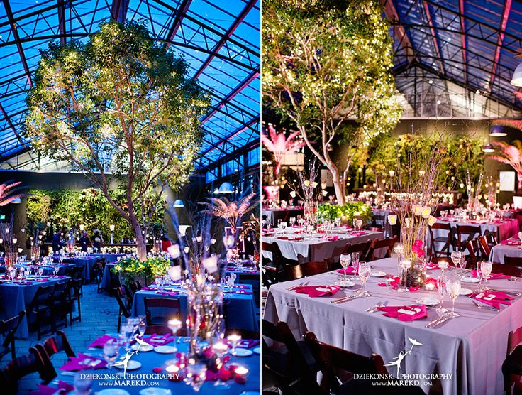 Amanda Leigh Wedding Planterra Conservatory West Bloomfield Michigan Photographer Exotic Greenhouse Ceremony30