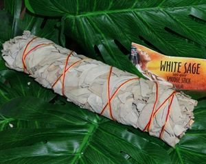 white sage smudge stick.