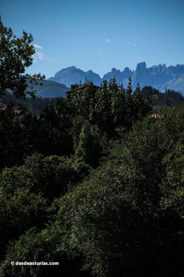 Naranjo de Bulnes o Picu Urriellu, #Asturias. Rutas por Asturias https://www.desdeasturias.com/arenas-de-cabrales/