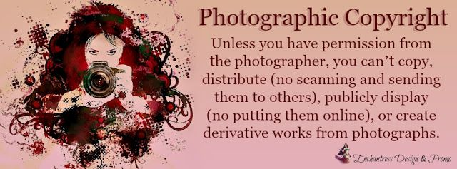 Viviana Enchantress of Books: No, You Can't Use That Image: Don't Be A Thief!
