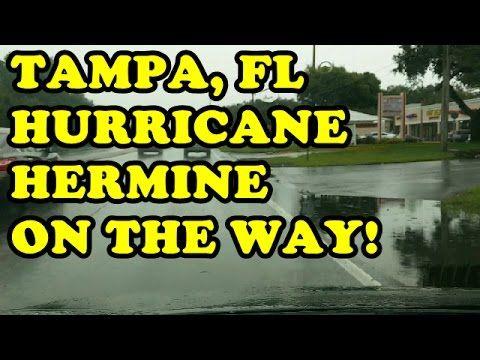 TAMPA FLORIDA HURRICANE HERMINE BEGINS