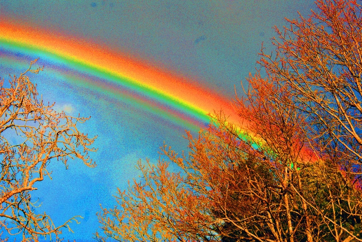 Supernumerary rainbow. A rare phenomenon in which several unconventional faint rainbows appear inside a standard primary rainbow.