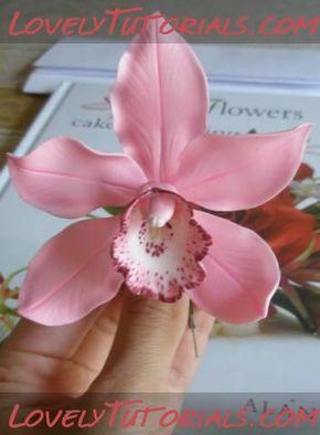 Tutorial orquídeas
