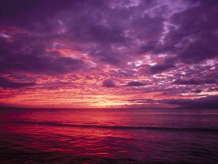 Малиновый рассвет картинки