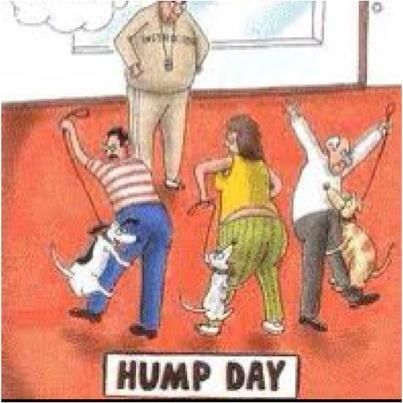 145 best images about Hump me up...... on Pinterest