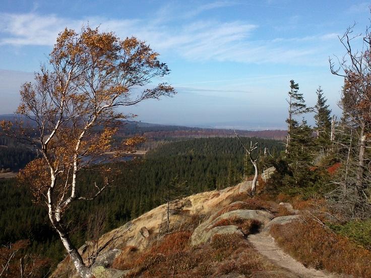 Scharfensteinklippe, Harz, Germany