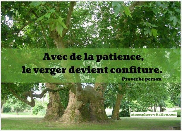 - Avec de la patience, le verger devient confiture. - Proverbe persan
