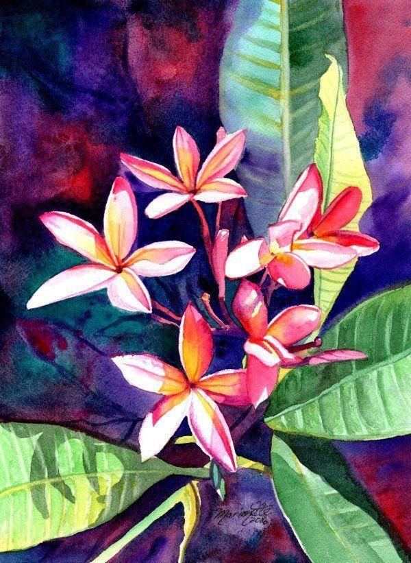 Plumeria Tropical Flower Limited Edition PRINT