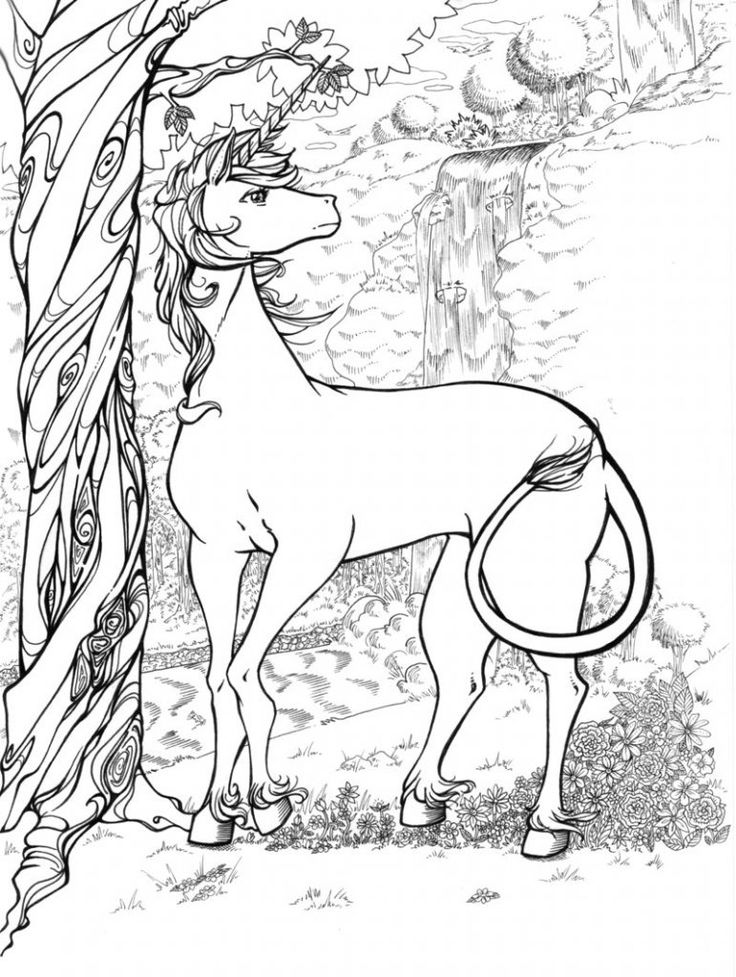 free-hard-coloring-page-to-download
