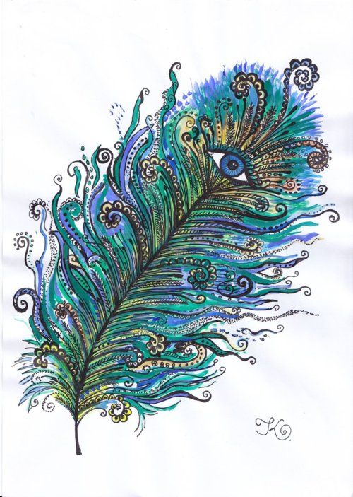 Eyes In Feathers Zentangle Doodle Feather Peacock