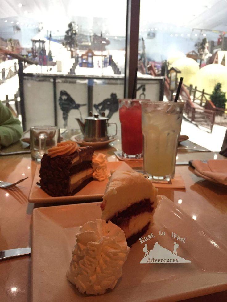 ski Dubai and have some cheesecake afterwards  سكاي دبي و بعدين جرب تشيز كيك فاكتوري chillout  http://www.easttowestadventures.com/en/30-things-dubai/ #easttowestadventures #travelblogger #thepalm #mydubai #chilloutlounge #ice #hotchocolate #visitdubai #cheesecakefactory #skidubai