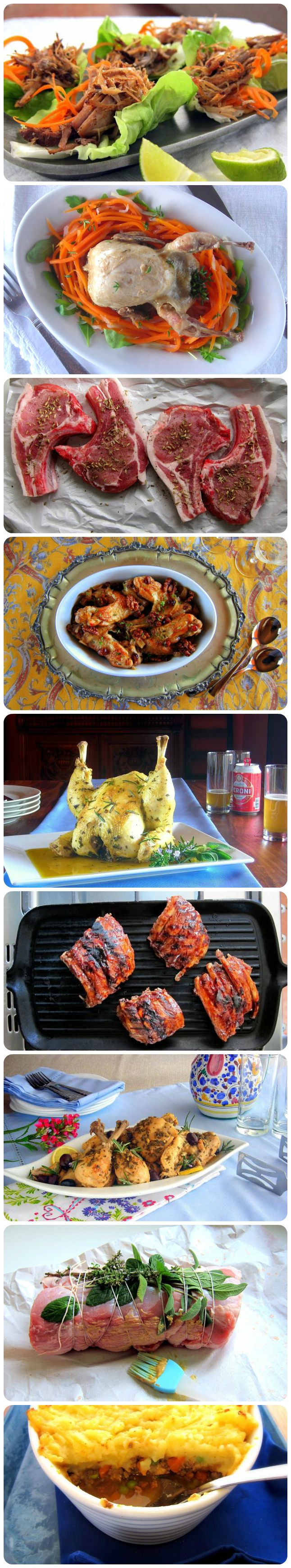 Amazing collection of PRESSURE COOKER meat recipes!
