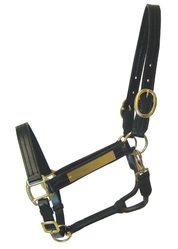Popular Leather Sale Halter with Nameplate | ChickSaddlery.com