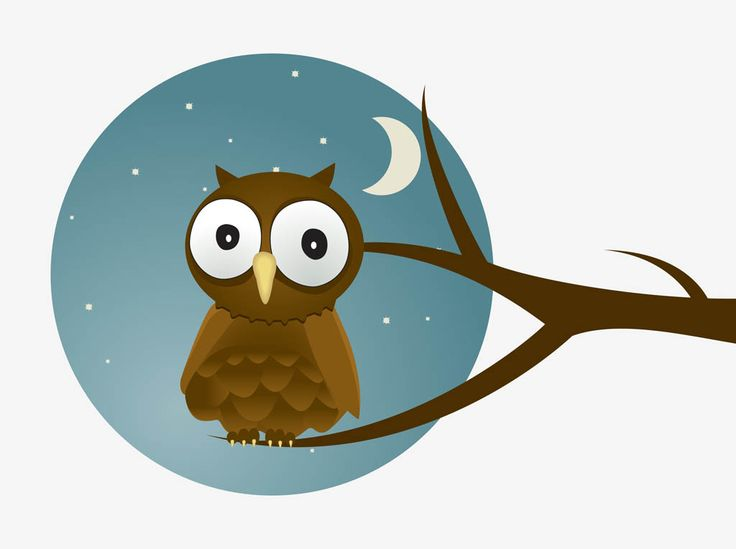 Nighttime vector graphics of an owl cartoon footage of a for A cartoon owl