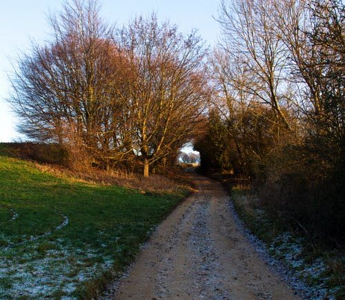 """Up Pasture Lane, Blockley"" 15 Jan 2012.  On Panoramio - Photos by Brian Burnett > Blockley"