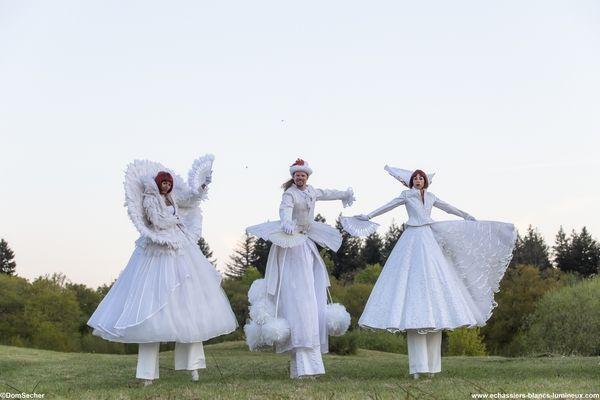 """Vêtus de dentelles précieuses et blanches lumières, nos échassiers blancs lumineux vous embarquent sur les  rives de la poésie et de l'imaginaire...."""". http://www.echassiers-blancs-lumineux.com"""