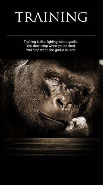 Stop when the gorilla is tired