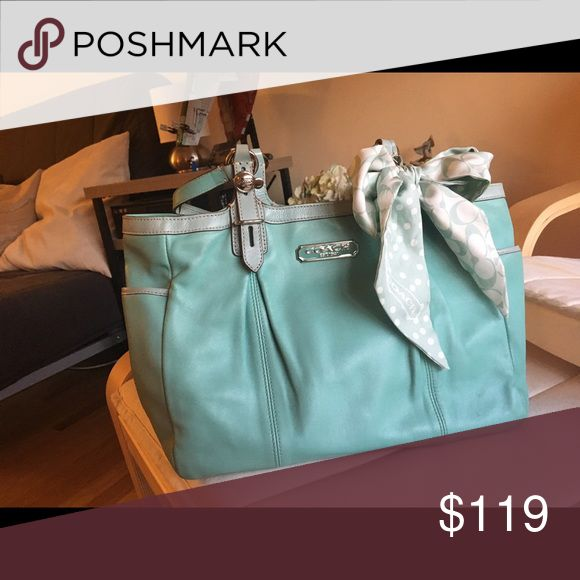 coach mint bag 85%new good conditions only used few times, Coach Bags Totes