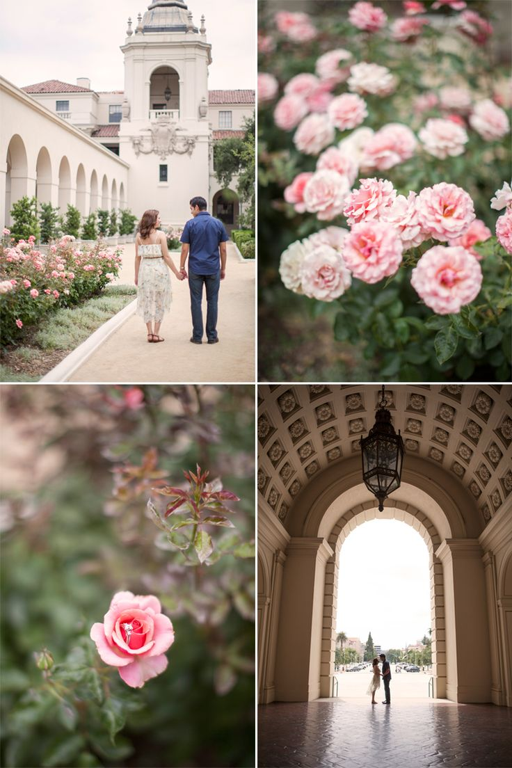 A sweet #engagement at Pasadena City Hall. #lovely #roses www.silverfeatherphotography.com