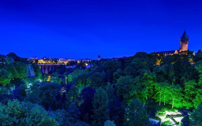 ルクセンブルク, 夜, 橋, 城, 森林