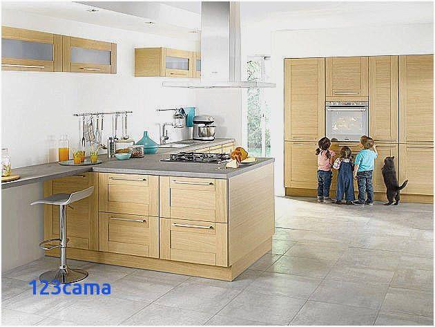 62 Of A Jour Charniere Meuble Cuisine Lapeyre Check More At Http Semantic Drupal Com 62 New Kitchen Designs Contemporary Kitchen Design Modern Kitchen Design