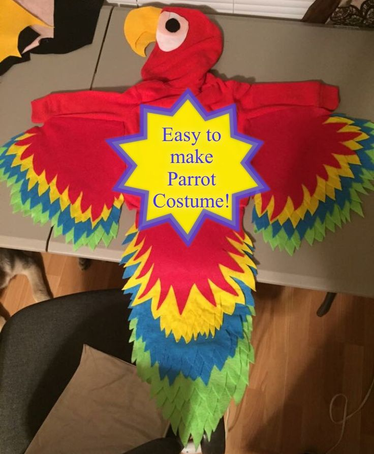 Easy to make Parrot Costume