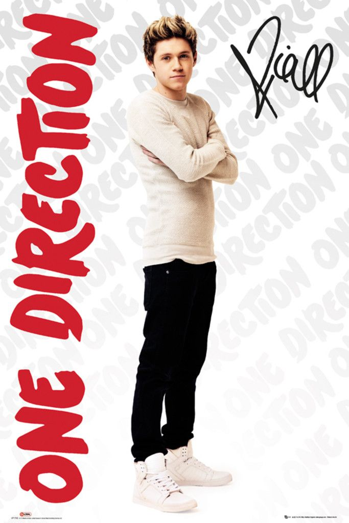 One Direction Niall Logos - Official Poster. Official Merchandise. Size: 61cm x 91.5cm. FREE SHIPPING