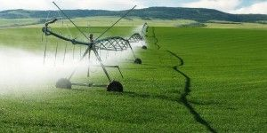 New Study Links Monsanto's Roundup To Autism, Parkinson's and Alzheimer's