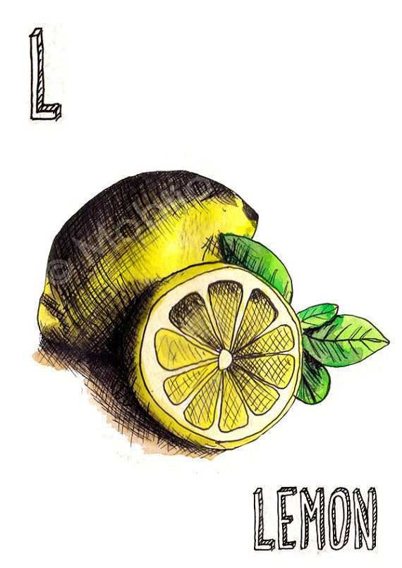 Vegetable fruit illustrations ink and watercolor by mobijo on Etsy
