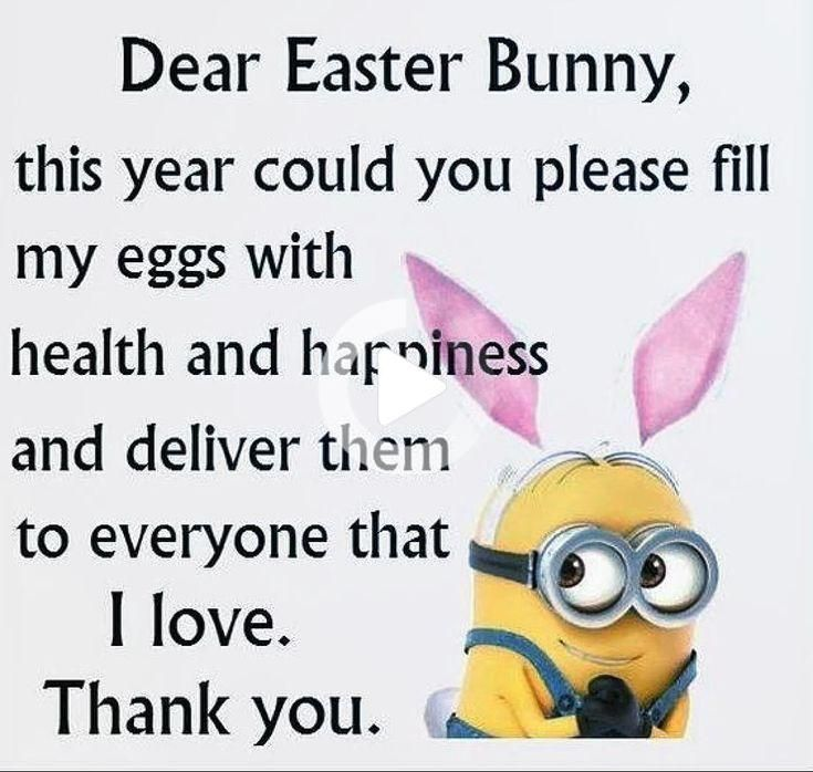 Vw Cars Hot Rods Vw Cars Vw Cars Hot Rods Vw Cars Vw Cars Volkswagen Vw Cars Golf Vw In 2020 Easter Quotes Funny Funny Easter Memes Easter Quotes