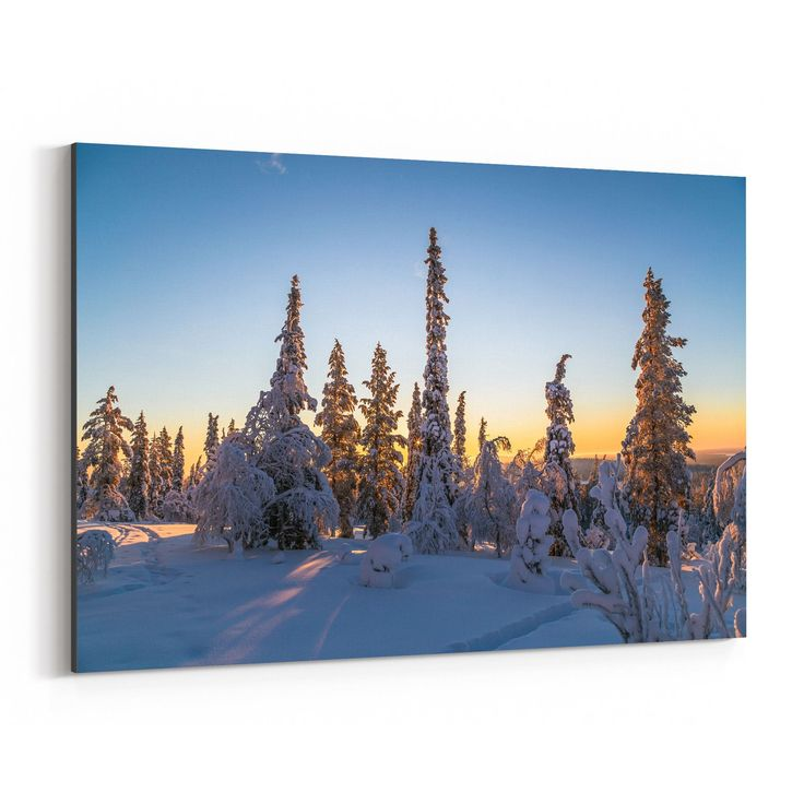 Noir Gallery Lapland Finland Snowy Forest Canvas Wall Art Print (12 x 18), Green