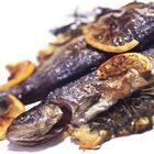 Een heerlijk recept: Forel met kruiden uit de oven