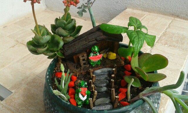 Miniatura jardín tortugas